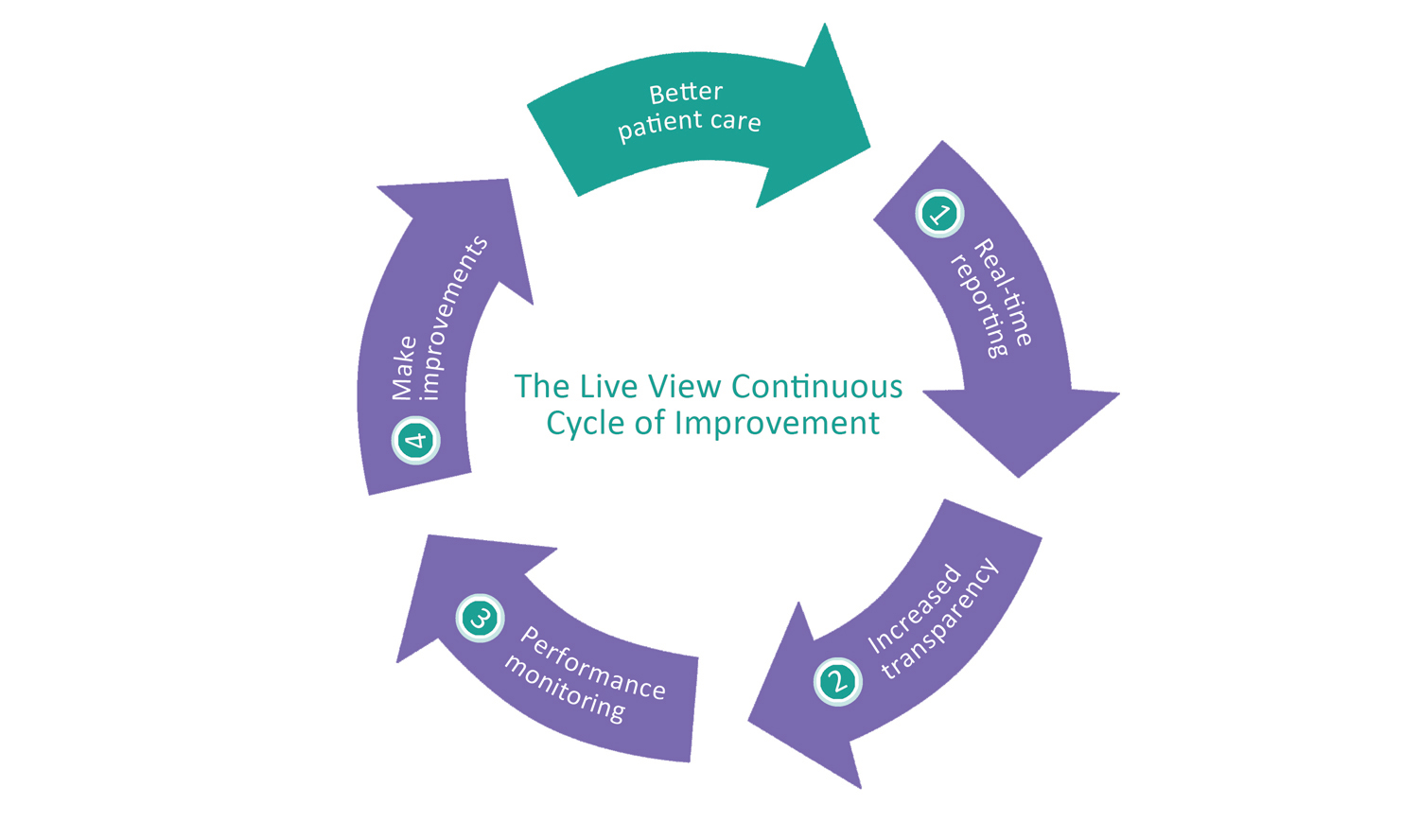 Live-View-Continuous-Improvement-Diagram